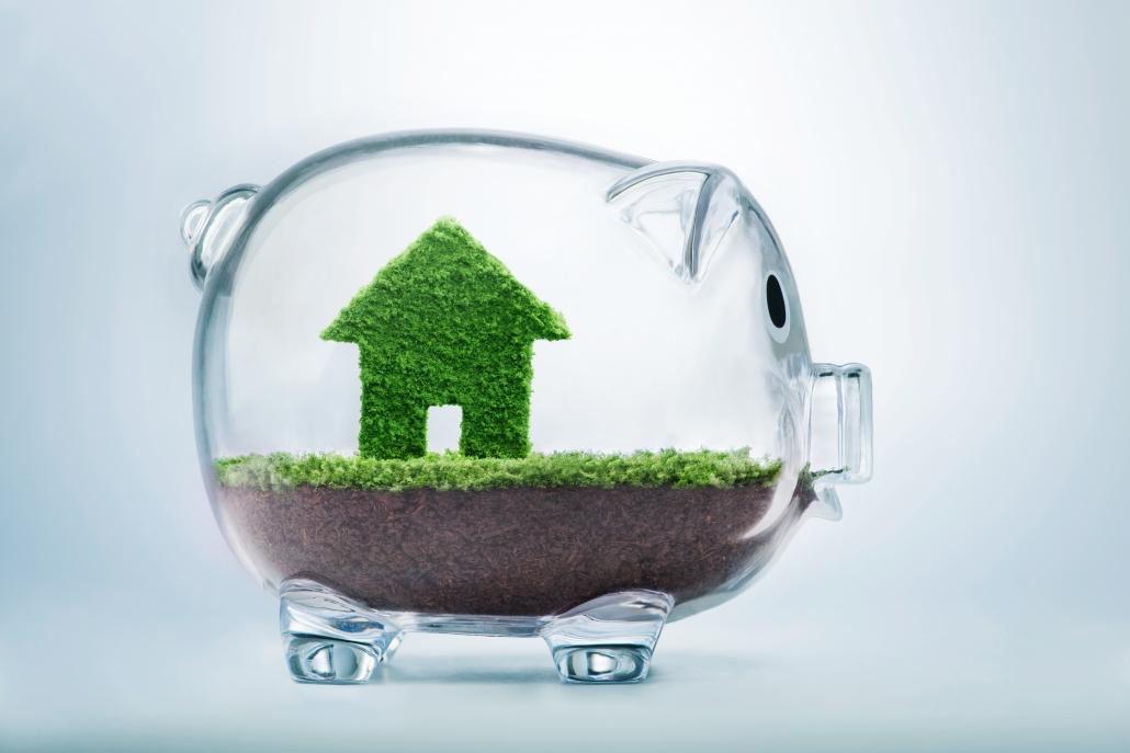Home Saving Grass Inside Transparent Piggy 1030x687